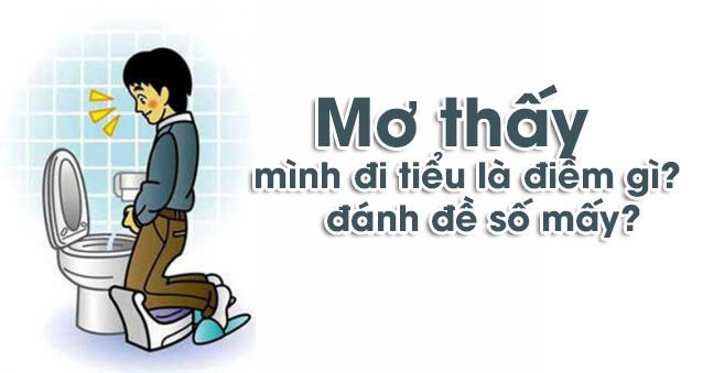 mo-di-tieu