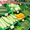 Kinh nghiệm trồng rau mầm