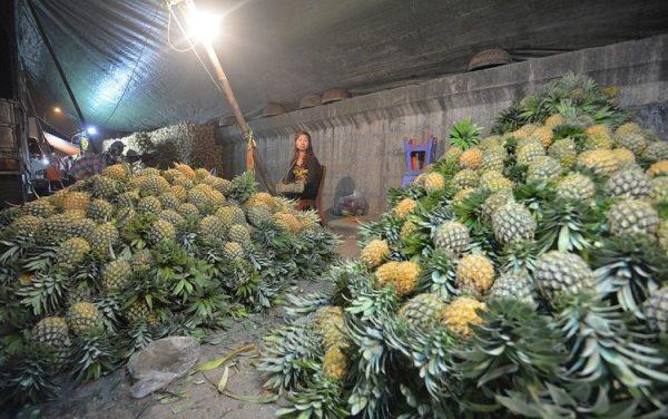 Hoa quả tươi ở chợ trái cây Long Biên