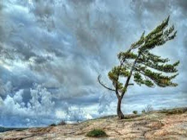 Dự cặp số đẹp trong kqxsmb khi mơ thấy bão