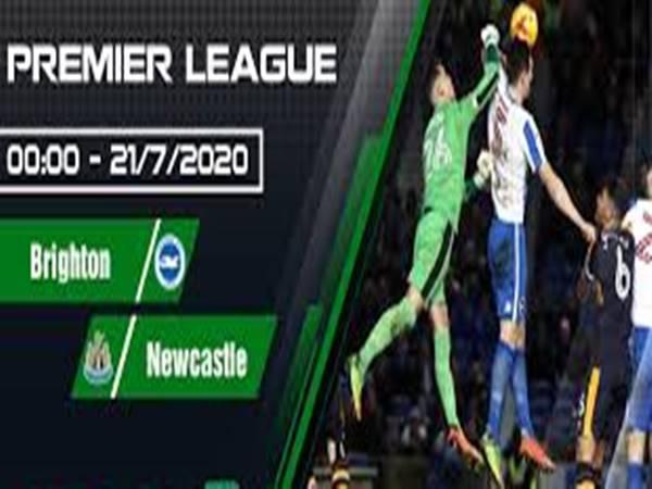 Nhận định bóng đá Brighton vs Newcastle, 00h00 ngày 21/07
