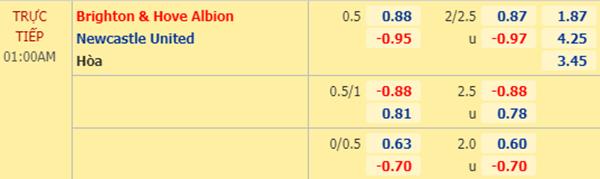 Tỷ lệ kèo giữa Brighton vs Newcastle